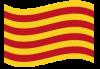 bandera-cat